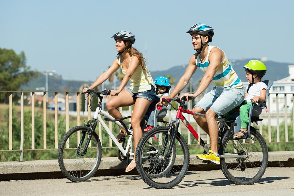 Bike rental management system